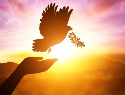 성령에 대한 우리의 믿음