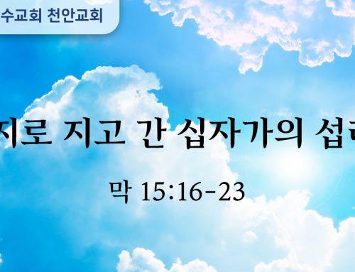 억지로 지고 간 십자가의 섭리 (막 15:16-23)