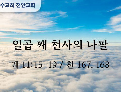 일곱째 천사의 나팔 (계 11:15-19)