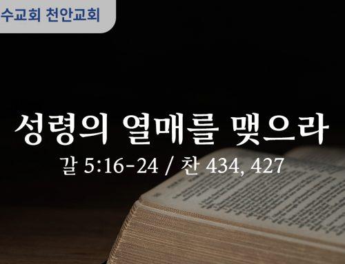 성령의 열매를 맺으라 (갈 5:6-24)