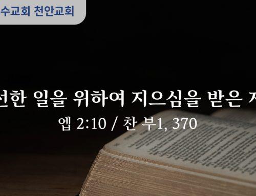 선한 일을 위하여 지으심을 받은 자 (엡 2:10)
