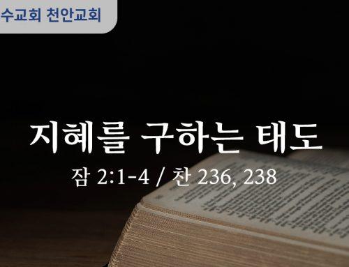 지혜를 구하는 태도 (잠 2:1-4)