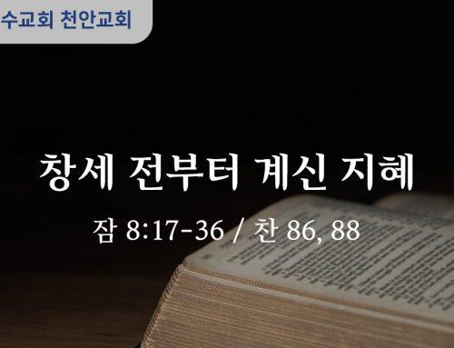 창세 전부터 계신 지혜 (잠 8:17-36)