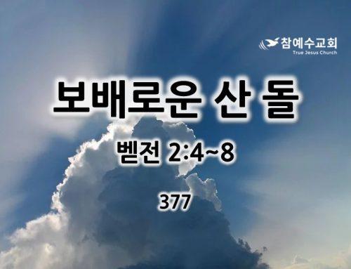 보배로운 산 돌(벧전 2:4~8)