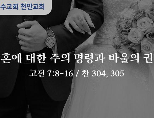 결혼에 대한 주의 명령과 바울의 권면 (고전 7:8-16)
